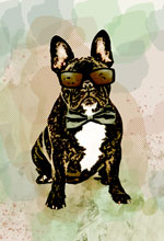 french bulldog pop art print green